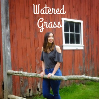 Watered Grass