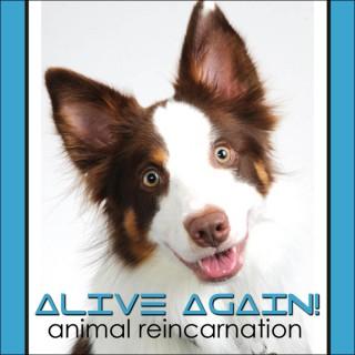 Alive Again - Pet Reincarnation on Pet Life Radio (PetLifeRadio.com)