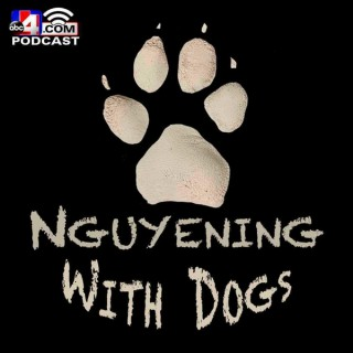 Nguyening With Dogs