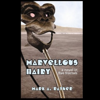 Marvellous Hairy - a novel in five fractals -