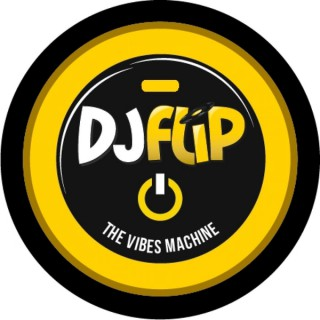 DJ FLiP - THE VIBES MACHINE
