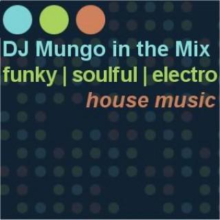 DJ Mungo in the Mix