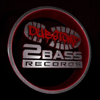 DS2B RECORDS