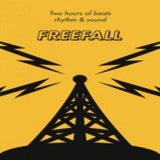 FreeFall w/David Bassin