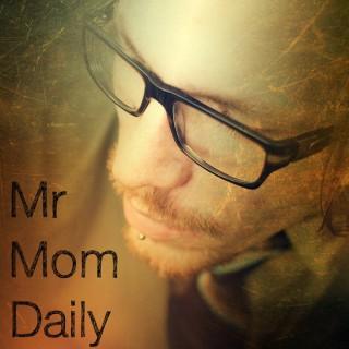 Mr Mom Daily