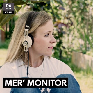 Mer' Monitor