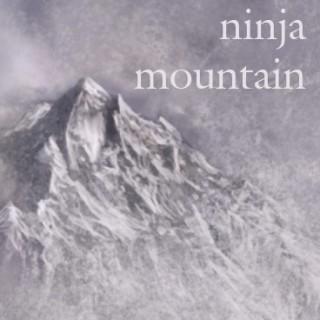 Ninja Mountain Scrolls