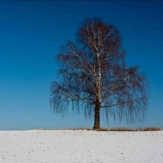 Snowprayers Podcast