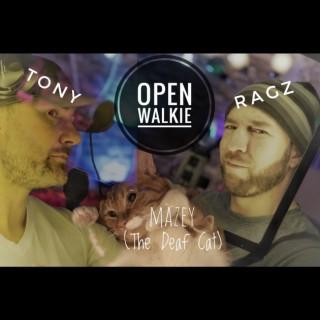 Open Walkie