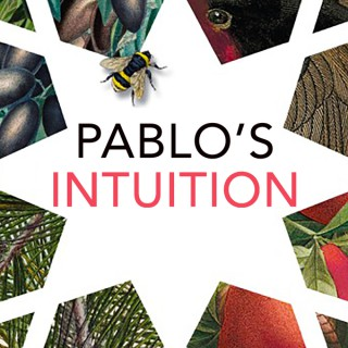Pablo's Intuition: Inspirational excerpts from a young Spaniard's spiritual awakening