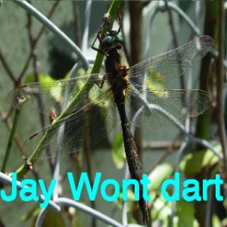 JayWontdart's podcast