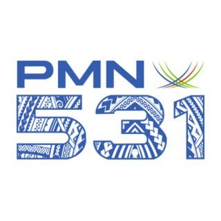 PMN 531
