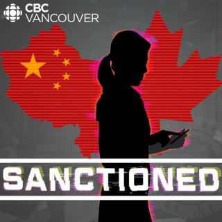 Sanctioned: The Arrest of a Telecom Giant
