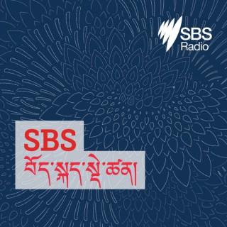 SBS Tibetan - SBS ???????????????