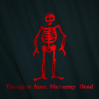 Thoughts from Maharrey Head