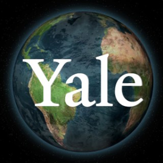 Yale Global Perspectives