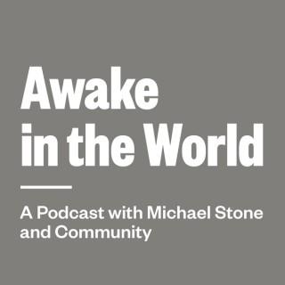 Awake in the World Podcast