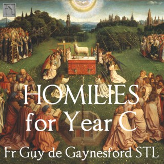 Behold the Lamb – Catholic Homilies for Year C – ST PAUL REPOSITORY