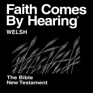 Beibl cymraeg (nad ydynt yn dramateiddio) - Welsh Bible  (Non-Dramatized)