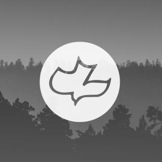 Calvary Fellowship Podcast