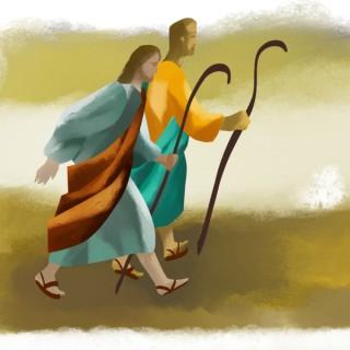 Camino de Discípulo