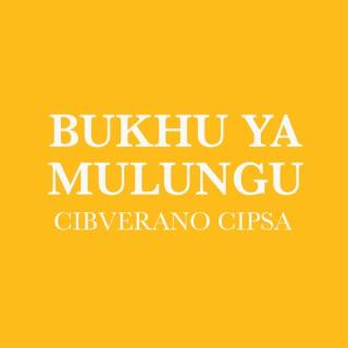 Chisena Bukhu Ya Mulungu (Não Dramatizado) - Cisena Bíblia (Non-Dramatized)