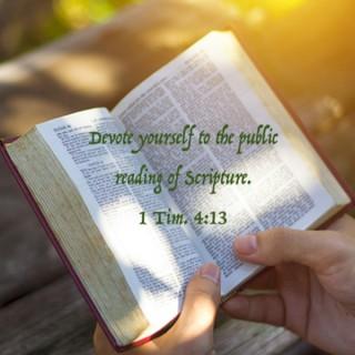 Devoted to Scripture