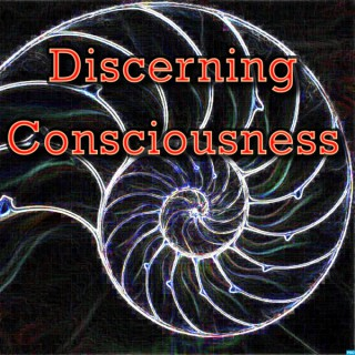 Discerning Consciousness' Podcast