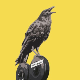 Raven Narratives