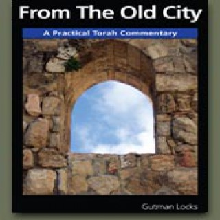 From The Old City by Gutman Locks