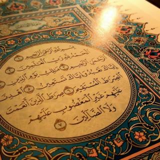 Islam Feed