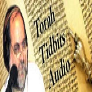 Israel National Radio - Torah Tidbits Audio