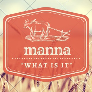 """Manna - """"What is it?"""""""