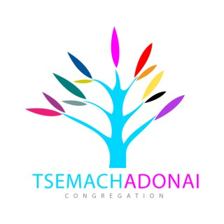 Messiah & Torah