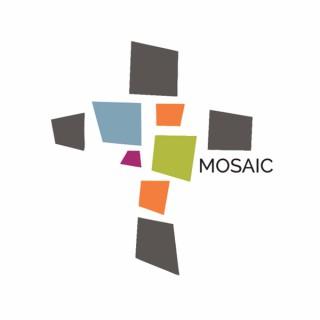 Mosaic - Conway