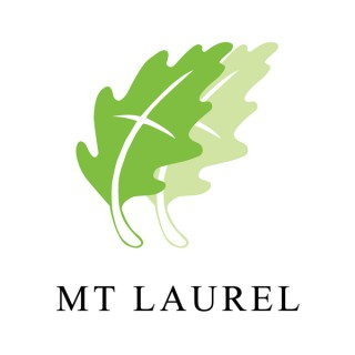 Mt Laurel Sermons