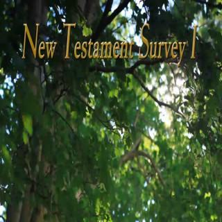 New Testament I  (Video)