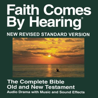NRS Bible - New Revised Standard Version