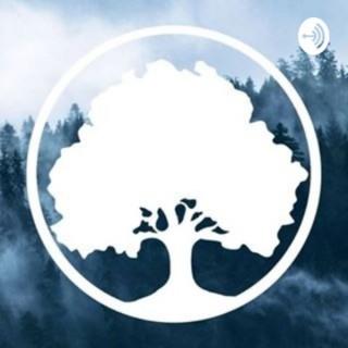 Oak Park Pentecostals Podcast