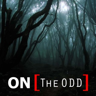 On The Odd - The Talk Show About All Oddities