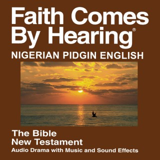 Pidgin English Bible for Nigeria