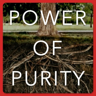 Power of Purity | Helping Men to Honor God with their Sexual Gift