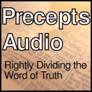Precepts Audio
