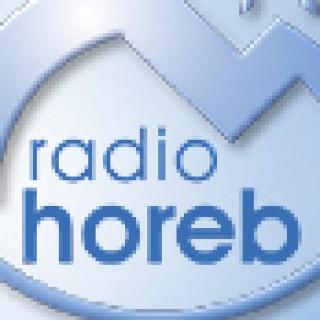Radio Horeb, Standpunkt