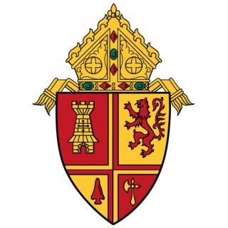 Roman Catholic Diocese of St. Petersburg