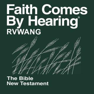 Rvwang Bible (Non-Dramatized)