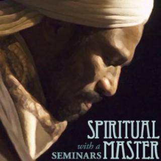 Seminars with a Spiritual Master