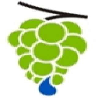 Straightway Vineyard Christian Fellowship