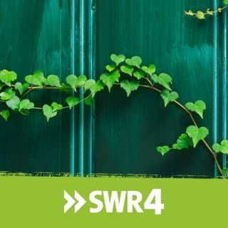 SWR1 BW Anstöße (Verkündigungssendung)