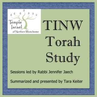 TINW Torah Study